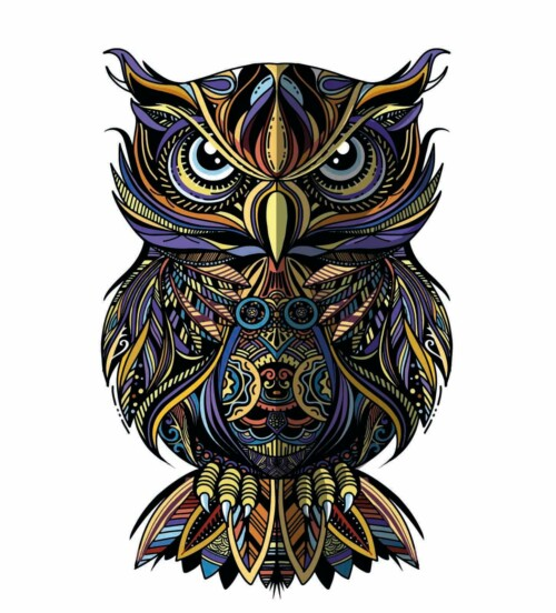 Pop Art Owl Portrait muurdecoratie