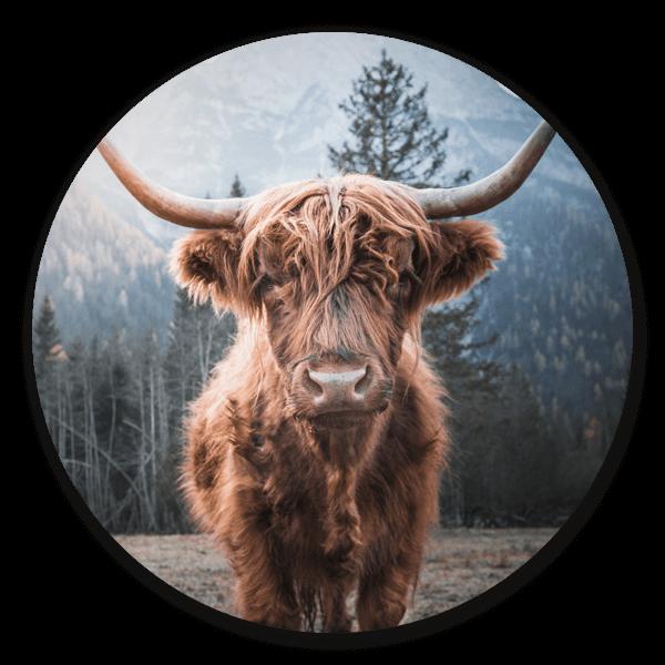 Highlander - Schotse Hooglander op ronde wanddecoratie