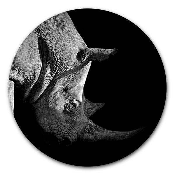 Muurcirkel Rhino
