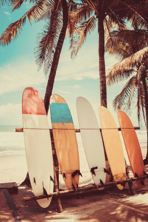 Surfboard - natuur wand en muurdecoratie