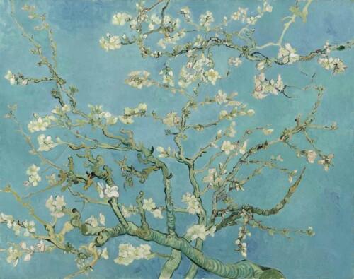 Amandelbloesem- Vincent van Gogh