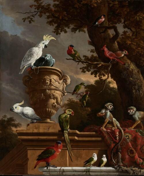 De Menagerie - Melchior d' Hondecoeter