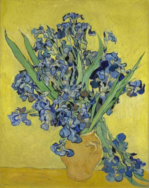 Irissen - Vincent van Gogh