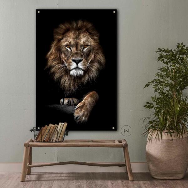 leeuw aan de muur