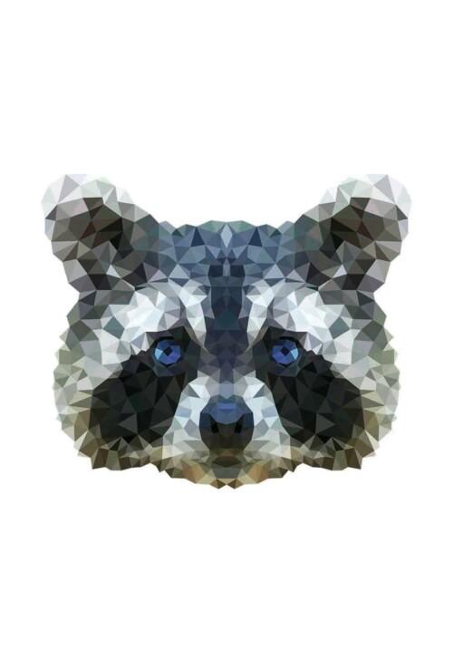 Pixxi Raccoon wanddecoratie kinderkamer