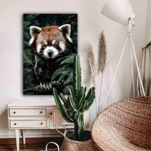 Sfeer aan de muur Red Panda
