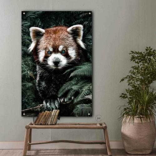 Wanddecoratie dieren - Red Panda