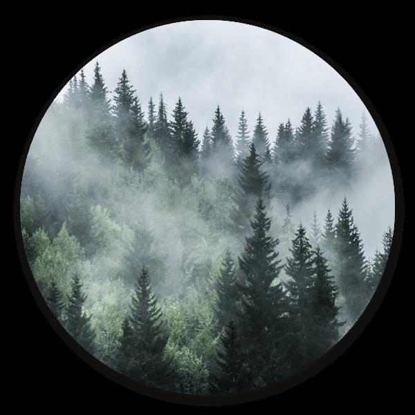 Misty Forest - ronde natuur muurdecoratie