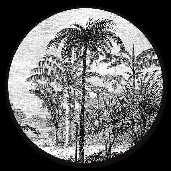 Muurcirkel Palm Jungle - ronde botanische wanddecoratie