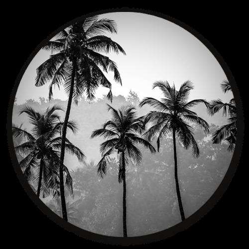 Muurcirkel Palm Trees - ronde botanische wanddecoratie