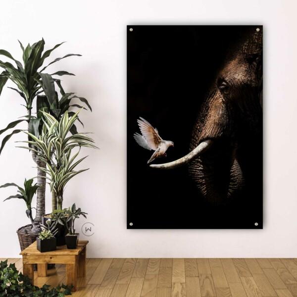 Elephant with Pigeon poster » Uniek ontwerp
