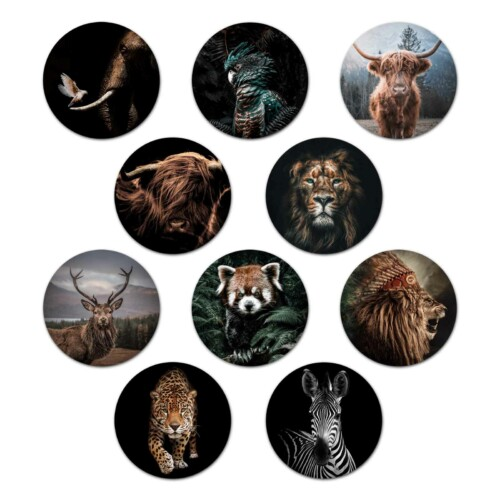 Onderzetters dieren