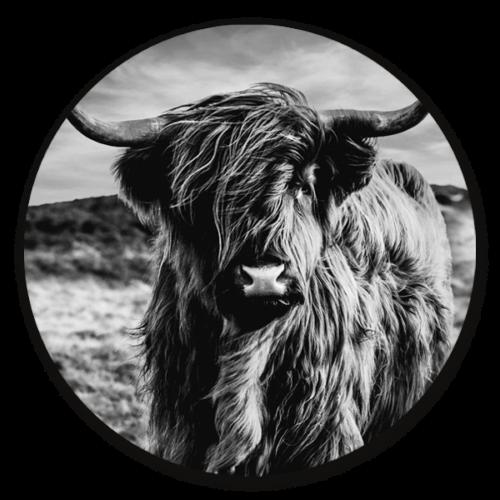 Muurcirkel Schotse hooglander zwart wit