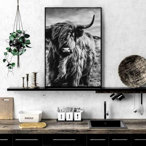Unieke poster | Schotse hooglander