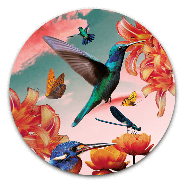 Muurcirkel hummingbirds with flowers