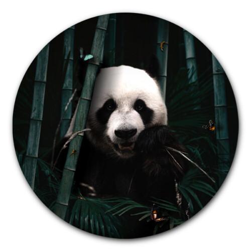 Muurcirkel Jungle Panda