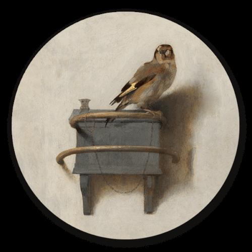 Muurcirkel Het Puttertje van Carel Fabritius